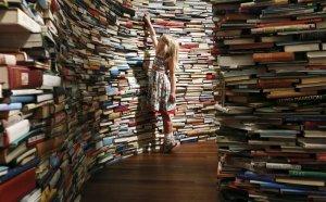 Knjige u lavirintu